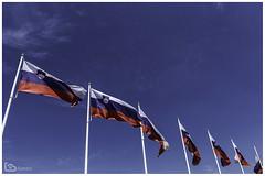 Flag of Slovenia (alamond) Tags: flag blue sky wind symbol nation patriotism pole red white waving government slovenia canon 7d markii mkii llens ef 1740 f4 l usm alamond brane zalar
