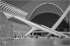 Museo de Las Ciencias (Ifastag) Tags: valencia es calatrava españa bw blackandwhite