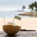 Kokosnuss-Eis am Strand