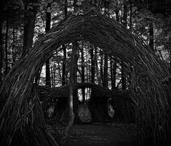 Spooky Formations in the Forest (R.A. Killmer) Tags: blackandwhite black white spooky moodyspooky forest woods ritual magic steven king ghostly artistic
