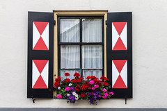 The window shutters with flowers (Marco van Beek) Tags: window shutters flowers building holland