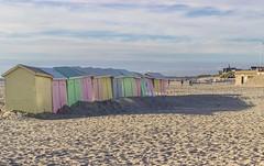 IMG_0531 (Azezjne (Az photos)) Tags: canon 75300 50 stm 600d berck sur mer bercksurmer cote côte dopale bromance plage sable bokeh zoom coucher soleil sunset beach sand eclipse dune mouette animaux animalière flou 75 300