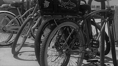 Beach Cruiser (Rand Luv'n Life) Tags: odc our daily challenge beach cruiser bikes bicycles san diego california boardwalk technical term transportation ride outdoor monochrome blackandwhite pacific coast
