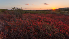A Day Ends in Red (Ken Krach Photography) Tags: dollysods westvirginia