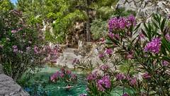 EL PARAISO (abuelamalia49) Tags: rio piscinasnaturales parquenatural fuentesrioalgar comunidadvalenciana baños paraiso
