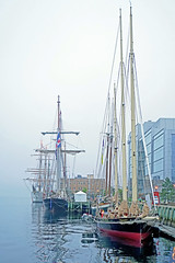 DSC08062 - Tall Ships in a Row (archer10 (Dennis) 101M Views) Tags: halifax ship tall fog fishing lobster boats sony a6300 ilce6300 18200mm 1650mm mirrorless free freepicture archer10 dennis jarvis dennisgjarvis dennisjarvis iamcanadian novascotia canada rendezvous2017tallshipsregatta tallships halifaxharbour