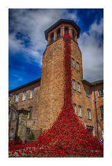 """Weeping Window. (Ian Emerson """"I'm Back"""") Tags: mill ceramic poppy poppies cascade tower window architecture heritage indusrty remembrance art sculpture derby derbyshire canon outdoor war omot"""