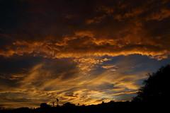 Sunset July 26 2017 #14 (Az Skies Photography) Tags: sun set sunset dusk twilight nightfall cloud clouds sky skyline skyscape skycandy skyfire red orange yellow gold golden salmon black canon eos 80d canoneos80d eos80d rio rico arizona az riorico rioricoaz arizonasky arizonaskyline arizonaskyscape arizonaskycandy arizonaskyfire july 26 2017 july262017 72617 7262017