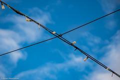Kreuzung (J.Weyerhäuser) Tags: felder strohballen hechtsheim wolken himmel lichterkette