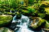 (Hugo Camara) Tags: camara canoneos5dmarkiii canon hugocamara madeiraisland madeira portugal landscape waterfall green formatt firecrest indurotripod induro
