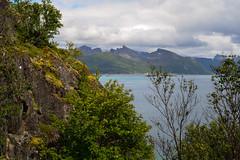Senja, Norway (Rind Photo) Tags: seascape landscape senja norway north islands trees travel travelling mountains fjeld skies green bluewater peaks summits spears nikondf rindphoto clauschristoffersen