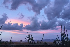 Purple Sky (EdZa) Tags: lascruces newmexico sky clouds cloud ipad organs organmountains ocotillo sunset