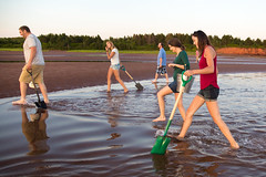 Clamdigging2-155-9 (carrieellengregory) Tags: 2017 beach clamdigging clams july keppoch pei redcliff sand summer tourism