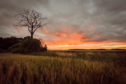 daybreak  (explored)