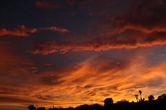 Sunset July 26 2017 #28 (Az Skies Photography) Tags: sun set sunset dusk twilight nightfall cloud clouds sky skyline skyscape skycandy skyfire red orange yellow gold golden salmon black canon eos 80d canoneos80d eos80d rio rico arizona az riorico rioricoaz arizonasky arizonaskyline arizonaskyscape arizonaskycandy arizonaskyfire july 26 2017 july262017 72617 7262017