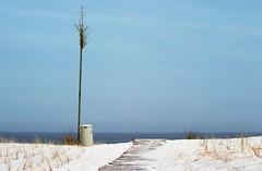 Ameland_1 (rob kraay) Tags: sand dune ameland rubbishbin horizon robkraay sea dunegrass garbagebin woodenwalkway waddenislands northsea amelandsbeach trashcan woodenpole
