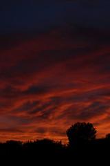 Sunset July 26 2017 #48 (Az Skies Photography) Tags: sun set sunset dusk twilight nightfall cloud clouds sky skyline skyscape skycandy skyfire red orange yellow gold golden salmon black canon eos 80d canoneos80d eos80d rio rico arizona az riorico rioricoaz arizonasky arizonaskyline arizonaskyscape arizonaskycandy arizonaskyfire july 26 2017 july262017 72617 7262017