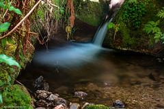 Gertesbacher Wasserfälle  - Langzeitbelichtung 1.Versuch (J.Weyerhäuser) Tags: russischekapelle badenbaden wasserfall sommerakademie