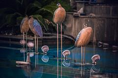 A new angle (Melissa Maples) Tags: antalya turkey türkiye asia 土耳其 nikon d3300 ニコン 尼康 nikkor afs 18200mm f3556g 18200mmf3556g vr summer fountain water peacocks art sculpture republicsquare cumhuriyetmeydanı reflection