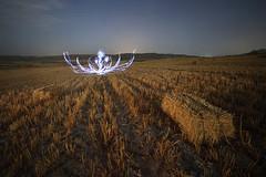 Hay vida tras la siega (Antonio Martínez Tomás) Tags: lightpainting pinturadeluz lightartphotography clorofilalumínica personajesdeluz fotografíanocturna sembrado pacas