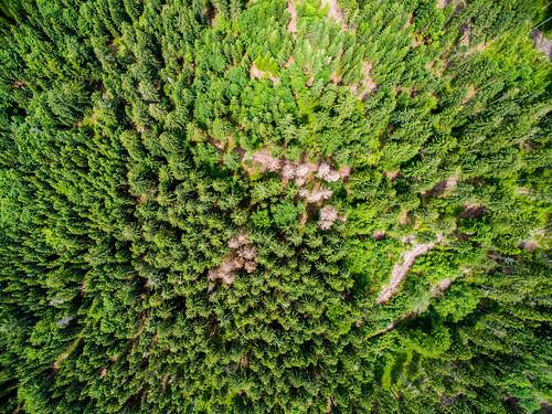 Luftbild Drohne