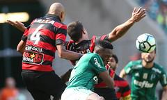 Palmeiras x Vitória (16/07/2017) (sepalmeiras) Tags: allianzparque campeonatobrasileiro palmeiras sep sériea vitória palmeirasxvitoria16072017 ymina