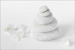 proyecto 199/365 (Art.Mary) Tags: zen piedras pierres stones blanco blanc white canon bodegón stilllife naturemorte proyecto365
