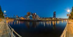 Guggenheim Bilbao (Andrés Domínguez Rituerto) Tags: europa europe españa spain paísvasco vizcaya bilbao ría agua water noche night horaazul bluehour nocturna nocturne cielo sky guggenheimbilbao guggenheim museo museum panorámica panorama largaexposición longexposure azul blue light bridge puente