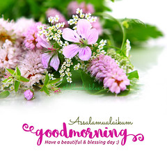 Good Morning (DillaSyadila) Tags: dillashaklee shakleebydilla shaklee ireachfamily quotes islamicquotes vitamin supplement