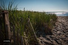 Beach fence (Alex Chilli) Tags: cape cod massachusetts east coast