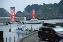 20170716-DS7_4473.jpg (d3_plus) Tags: 南伊豆 fishingport 空 aiafnikkor28105mmf3545d d700 skindiving drive fish marinesports apnea port 風景 aiafzoomnikkor28105mmf3545d 28105mmf3545af sea 路上 street minamiizu 自然 伊豆 景色 nature 魚 underwater watersports sky ニコン 水中 28105mmf3545d japan ツーリング 静岡県 スキンダイビング 28105 plant nikon マリンスポーツ 素潜り 漁港 281053545 nikkor izu 静岡 ドライブ 28105mm 植物 海 snorkeling southizu nikond700 touring diving 息こらえ潜水 ズーム scenery nikon1 28105mmf3545 shizuoka 日本 bloom zoomlense シュノーケリング