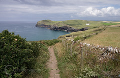 Kellan Head (petehem) Tags: kellan cornwall coast path swcoastpath seascape