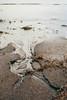 iceland-ejh-4349