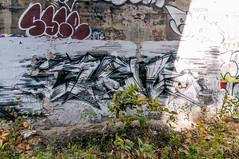 20151017-_IGP6375 (STC4blues) Tags: graffiti streetyart jerseycity bergenarches mes pfe