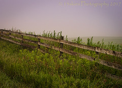 The Distant Fade (HFF) (13skies) Tags: cleaverrd parison countryroad field farm fencefriday countryside rural quiet hff wooden happyfencefriday grass green sonyalpha99 sony 13skies morning foggy fog mist early singleshothdr postprocessing border private land