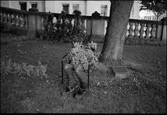 Death (intasko) Tags: monochrome film analog tourcoing france landscape mju olympus bw pellicule man homme ubran street poetic art artistic