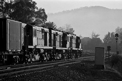 img469 (Bingley Hall) Tags: rail railway railroad transport train transportation trainspotting australia newsouthwales nsw paterson glint blackandwhite monochrome alco aegoodwin dl541
