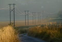 plaine de Caille (b.four) Tags: road route strada ligneélectrique lineaelettrica powerline caille alpesmaritimes