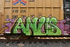 ANUS (TheGraffitiHunters) Tags: graffiti graff spray paint street art colorful freight train tracks benching benched boxcar anus