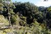 20170709-16-Bluff River Gorge walk (Roger T Wong) Tags: 2017 australia bluffrivergorge buckland rogertwong sel1635z sony1635 sonya7ii sonyalpha7ii sonyfe1635mmf4zaosscarlzeissvariotessart sonyilce7m2 tasmania bushwalk caves cliff erosion gorge hike outdoors sandstone tramp trek walk
