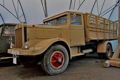 fiat 634N (riccardo nassisi) Tags: collezione ansaloni old truck camion auto car wreck wrecked rust rusty rottame relitto r ruggine ruins scrap rottami scrapyard bologna