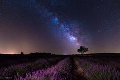 Vía Láctea en Brihuega (Yorch Seif) Tags: brihuega nocturna estrellas stars starrynight víaláctea milkyway