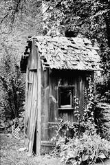 Historic Germantown_031_01 (mujetdebois) Tags: 35mm canonelan100 analogphotography biancoenero blackandwhitephotography filmisnotdead filmlives filmphotography monochrome negroyblanco noirblanc schwarzundweis черноеибелое ilfordpanf50
