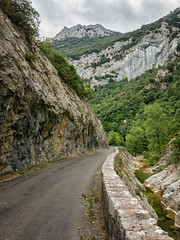 narrow gorge road and beginning stream (maryannenelson) Tags: france gorge rocks view cliff dropoff landscape wall bikers