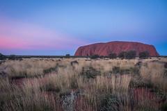 Uluru - Sunset-11