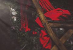 Morning's Proof (Angie Lambert) Tags: morningsproof romance greenhouse weliveinthewoods reddress vintagedress vintagelife