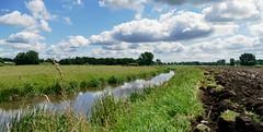 Am Graben - At the ditch (antje whv) Tags: graben ditch wolken clouds wiese meadow norddeutschland northgermany wesermarsch stotelerrandgraben