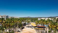 198/365 - Palm trees and pools (phil wood photo) Tags: 2017 2017photofun 365 day198 hotel majorca mallorca palmtrees pools sacoma