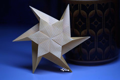 Star (talina_78) Tags: origami star hexagon
