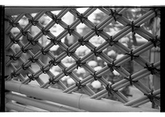 161120 Roll 455 gr1vtmax780 (.Damo.) Tags: 28mmf28 japan japan2016 japannovember2016 analogue epson epsonv700 film filmisnotdead ilfordrapidfixer ilfostop japanstreetphotography kodak kodak400tmax melbourne ricohgr1v roll455 selfdevelopedfilm streetphotography tmax tmaxdeveloper xexportx
